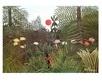 Rousseau henri urwald medium