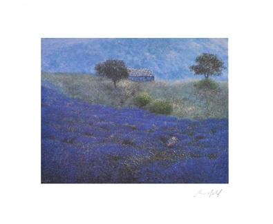 Lutz Muenzfeld Wilder Lavendel