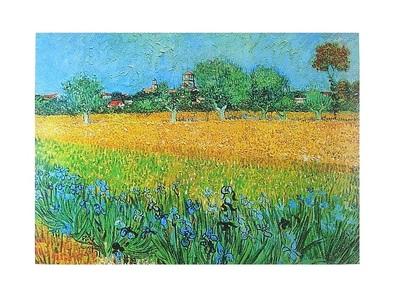 Vincent van Gogh Blick auf Arles mit Schwertlilien