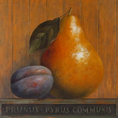 Fabrice de Villeneuve 2er Set 'Prunus & Pyrus' + 'Pyrus & Ficus'