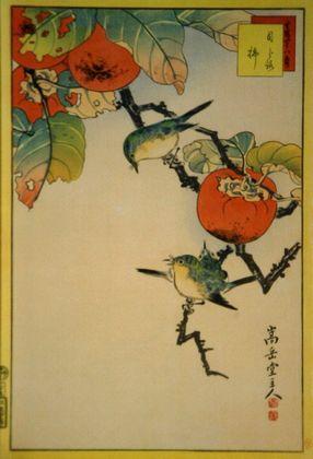 Sugakudo Japanische Brillenvoegel und Kakifrucht