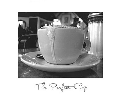 Scott Amour The Perfect Cup