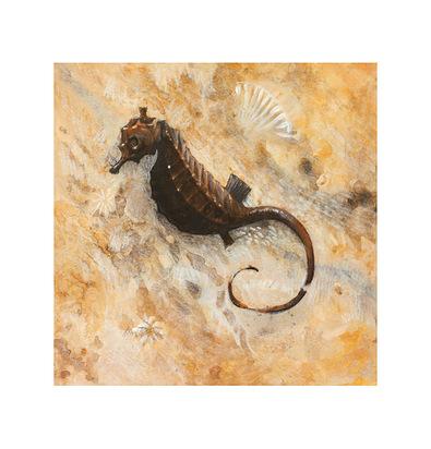 Arnie Fisk 4er Set 'Seahorse' + 'Starfish' + 'Nautilius' + 'Scallop'