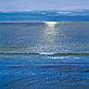 Evans paul sea sparkle 37124 medium