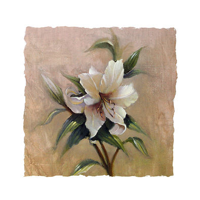 Paul Mathenia 4er Set 'Garden Lily' + 'Iris Elegance' + 'Tulip Bouquet' + 'Rose Delight'