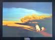 National Geographic Savuti Lioness, Botswana