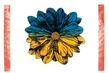 Eliza Kopec Clear Objekt (Blau-Gelb)