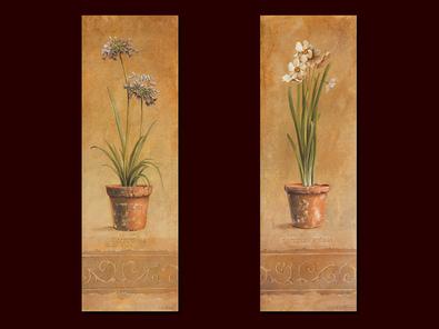 Fabrice de Villeneuve 2er Set 'Agapanthus Frise' + 'Narcissus Frise'
