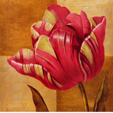 Studio 5 Modern Tulip