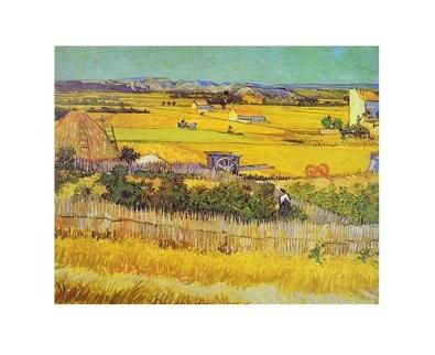 Vincent van Gogh Vegetable Garden