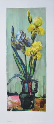 Didot Iris