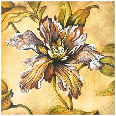 Augusta 2er Set Grandiflora I + II