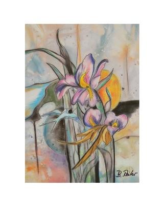 B. Reiter Iris
