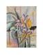Reiter b iris medium