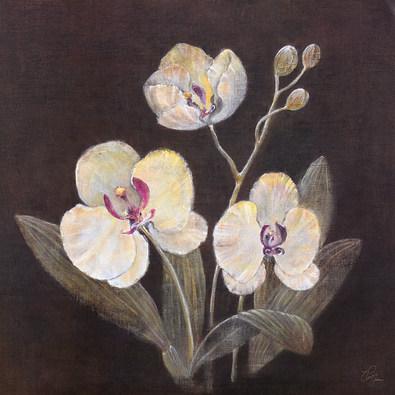 Victoria Gerken 2er Set 'Mystic Orchid I + II'