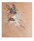 Henri Toulouse-Lautrec Frauenprofil