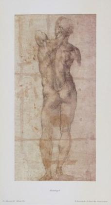 Michelangelo Maennlicher Akt