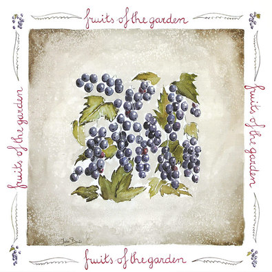 Julia Bonet 2er Set Fruits of the Garden