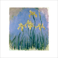 Monet claude les iris jaunes medium