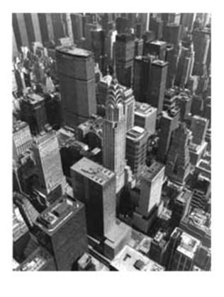 Christopher Bliss Chrysler Building