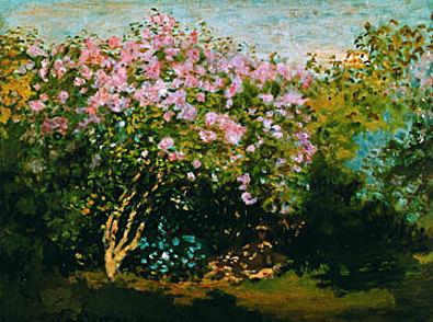 Claude Monet Bluehender Flieder in der Sonne