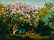 Monet claude bluehender flieder in der sonne 38890 medium