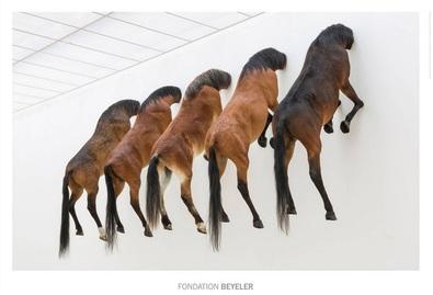 Maurizio Cattelan 5 Pferde