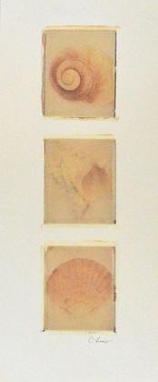 Lerner claire nautilus panel large