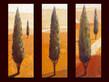 Kirchner karsten 3er set falcone monte albano catini medium
