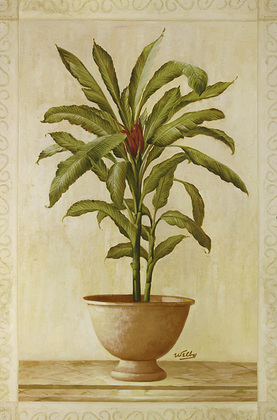 Welby Potted Palm 1