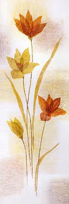 Nicht bekannt Tangerine Tint I