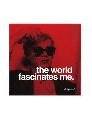 Andy Warhol The world fascinates me