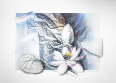 W. Reinshagen Blumen I