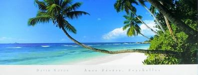 David Noton Anse Severe, Seychelles