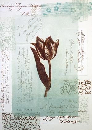 Gillian Fullard 2er Set 'Tulip Script Floral' + 'Chocolate Script Floral'