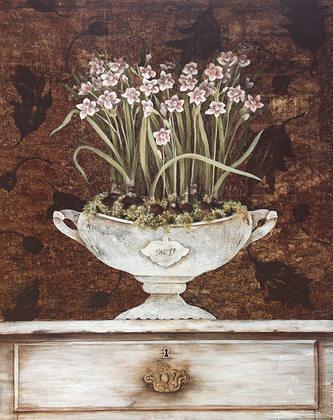 Janet Tava 2er Set 'Tureen Paperwhites' + 'Tureen Hyacinth'