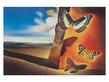 Salvador Dali Paysage aux papillons