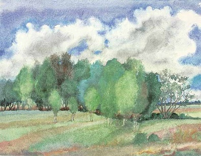 Guenter Grass Landschaft mit Birken