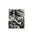 Chagall marc der hase u die froesche medium