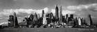 Susan City Manhattan Skyline