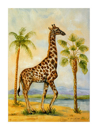 Alexandra Churchill 4er Set 'Giraffe Africana' + 'Elephant Africana' + 'Zebra Africana' + 'Camel Africana'