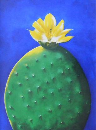 Vogt Opuntia I (Kaktus)