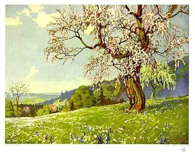Ernst Dorn Apfelbluete