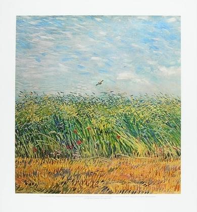 Vincent van Gogh Getreidefeld mit Mohnblumen und Lerche