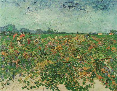 Vincent van Gogh Der Weingarten