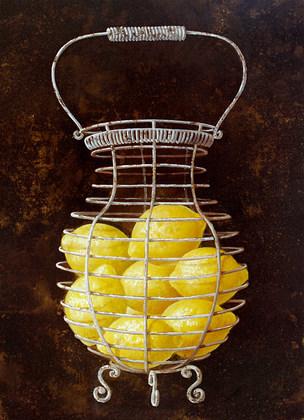 Fabrice de Villeneuve French Lemons