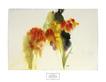 Nechis barbara summer silhouette medium