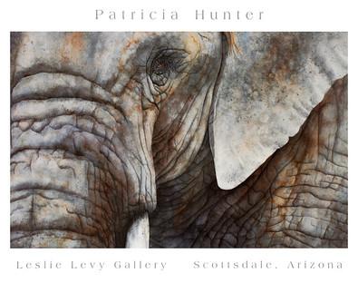 Patricia Hunter Elephant Face
