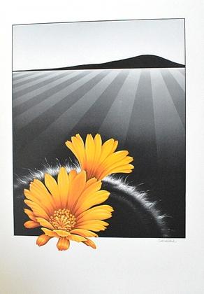 Schlichtholz Gelbe Blumen