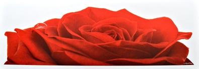 Plisson guillaume rose large